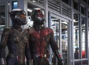Ini Alasan Ant-Man dan Wasp Tidak Muncul di Avengers: Infinity