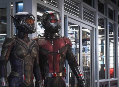 Ini Alasan Ant-Man dan Wasp Tidak Muncul di Avengers: Infinity War