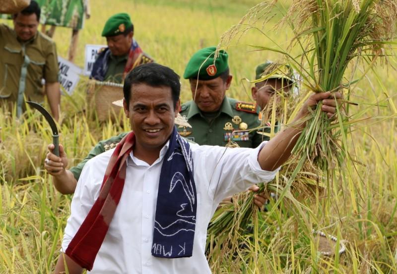 Menteri Pertanian Andi Amran Sulaiman (ANTARA FOTO/Herry Murdy Hermawan)