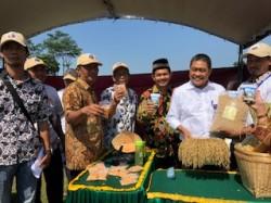 Dirjen PKT: Dana Desa untuk Penangkaran Benih Unggul Pertanian