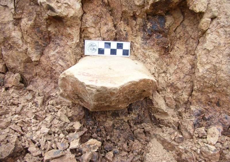 Salah satu perkakas kuno yang ditemukan si Shangchen, Tiongkok (Foto: Zhaoyu Zhu).