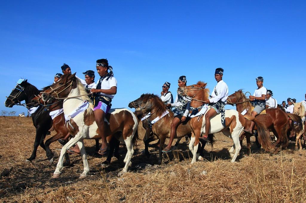 Melihat Parade 1001 Kuda Sandelwood di Sumba
