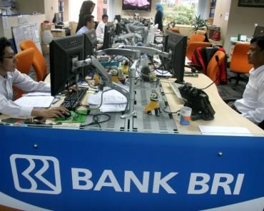 BRI Ikut Andil Biayai Pembelian Saham Freeport Indonesia