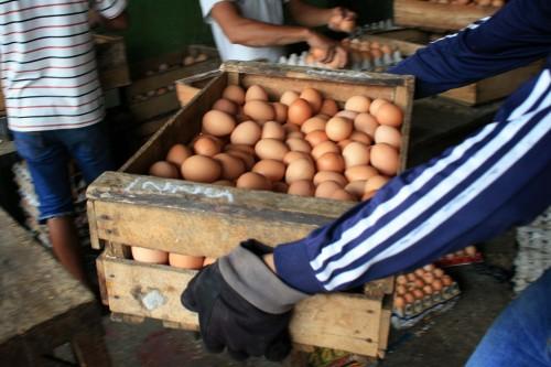 Telur Ayam. MI/ANGGA YUNIAR.