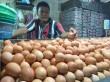 Omzet Pedagang Telur Bisa Capai Rp50 Juta Sehari