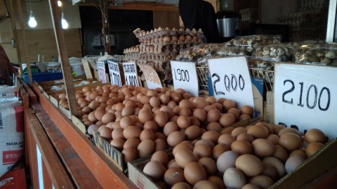 Harga Telur di Sulut Rp51 Ribu per Baki