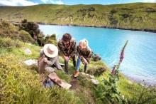 Lima Cara Terbaik Mengelilingi Selandia Baru