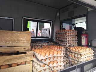 Bulog Riau Siap Operasi Pasar Telur