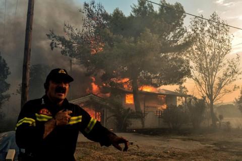 20 Orang Tewas dalam Kebakaran Hutan di Yunani