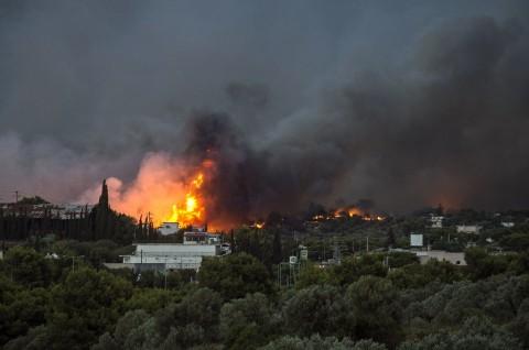 Kebakaran Hutan, Yunani Minta Bantuan AS dan UE