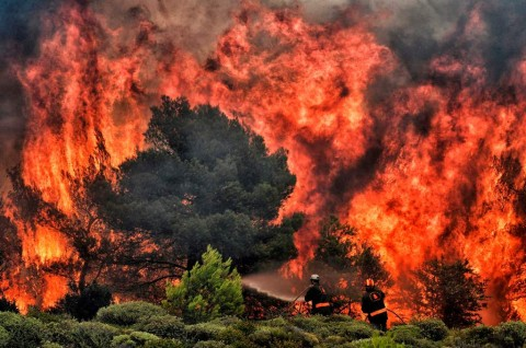 Korban Tewas Kebakaran Yunani jadi 74 Orang