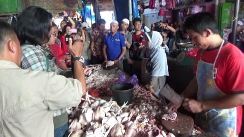 Harga Daging Ayam di Makassar Dianggap Masih Wajar