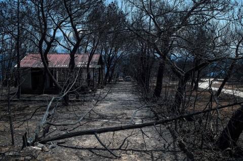 Korban Tewas Kebakaran Yunani Bertambah Jadi 91 Orang