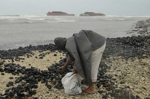 Tumpahan Batu Bara Mencemari Pantai