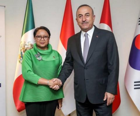 Turki Apresiasi Peran Indonesia untuk Kemerdekaan Palestina