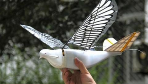 Drone Burung Jadi Mata-Mata Pemerintah Tiongkok