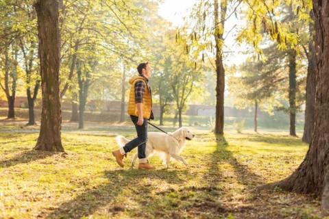 Aktivitas Sederhana yang Memberi Manfaat Seperti Berolahraga