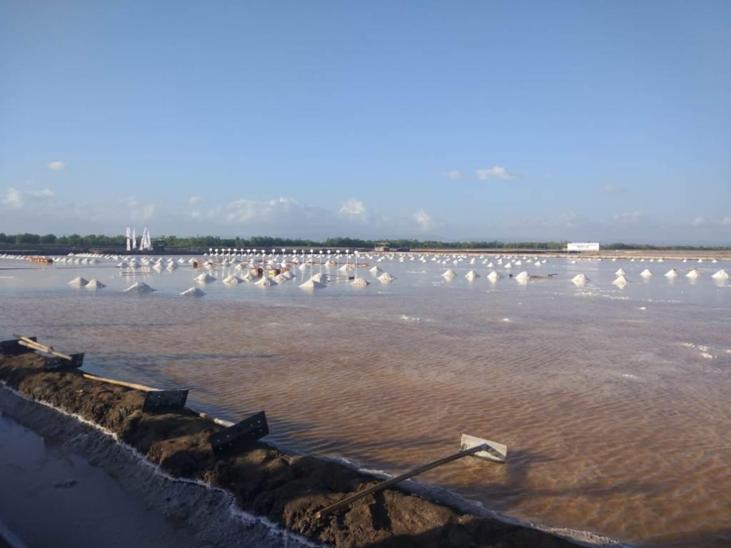 Lahan garam di Bipolo, Kupang, NTT. (FOTO: Medcom.id/Annisa Ayu)