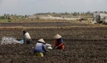Kerja Sama Australia-Indonesia Ciptakan Perubahan Berkelanjutan