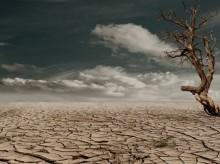 31.821 Jiwa di Sukabumi Terdampak Kekeringan