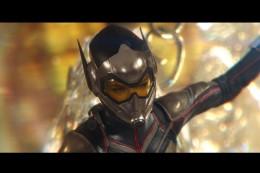 Pemeran The Wasp Tak Berminat Main di Film Solo The Wasp