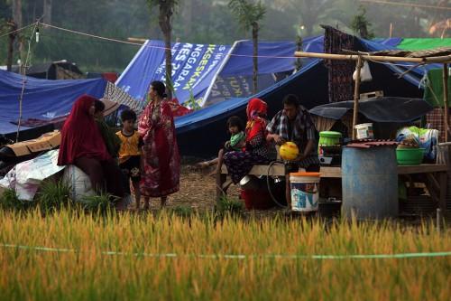 Warga korban gempa mengungsi di lahan kosong Pemenang Barat,