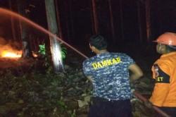 Kebakaran Hutan Jati akibat Warga Bakar Sampah Sembarangan