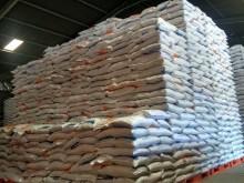 Bulog Riau-Kepri Datangkan 8.000 Ton Beras