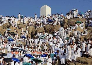Jemaah haji melakukan wukuf di sekitar Jabal Rahmah di Padang