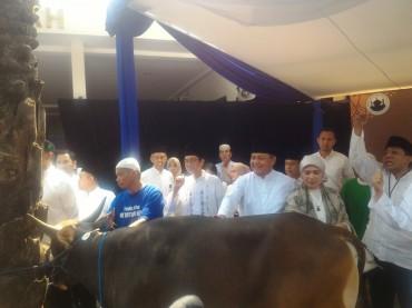 BI Prioritaskan Penyaluran Kurban bagi Masyarakat Lombok