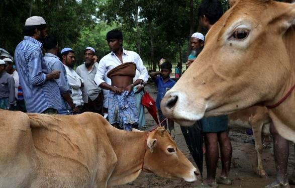 Perayaan Iduladha di kamp-kamp pengungsian perbatasan Myanmar-Bangladesh. (Foto: SCMP)