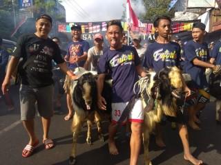 Tradisi Arak-Arakan Hewan Kurban di Malang