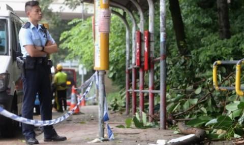 WNI di Hong Kong Meninggal Akibat Tertimpa Dahan Pohon