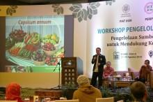 75 Persen Keanekaragaman Genetik Tanaman Pertanian Hilang