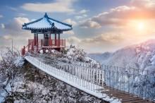 Ini Tempat di Korea yang Sebaiknya Anda Kunjungi pada Musim