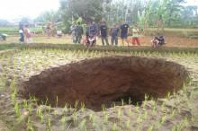 Lubang Misterius Muncul di Sawah Milik Warga di Sukabumi
