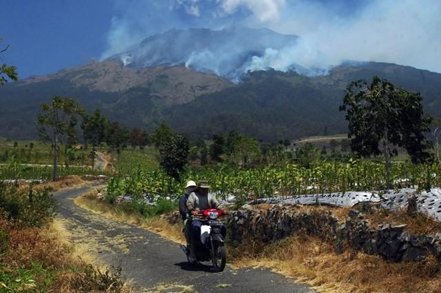 Pengendara sepeda motor melintas di perladangan berlatar belakang kebakaran hutan gunung Sumbing Desa Pagergunung, Bulu, Temanggung, Jawa Tengah, Selasa (11/9). ANTARA FOTO/Anis Efizudin.