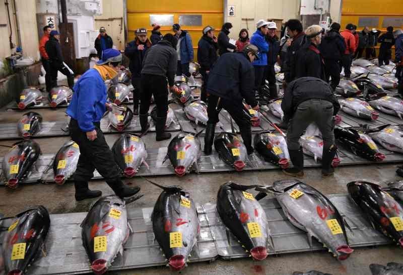 Aktivitas di Pasar Ikan Tsukiji akan menjadi kenangan. (Foto: AFP).