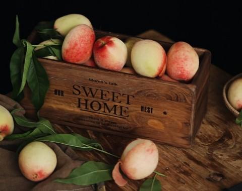 Berikut adalah khasiat rutin makan apel setiap hari bagi kulit.