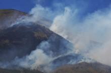 Kebakaran Hutan di Gunung Sindoro Padam