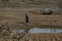 Warga Tegal Manfaatkan Air Sawah untuk Mandi dan Mencuci