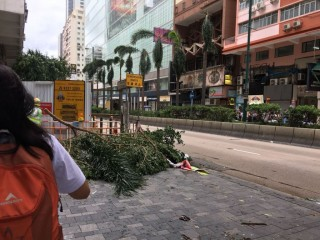 Usai Diterjang Topan Mangkhut, Hong Kong Lakukan Pembersihan Besar-besaran