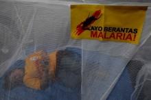 Beda Malaria dan DBD