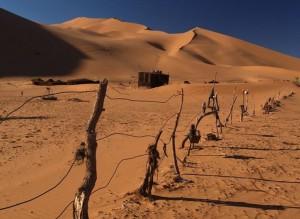 Trump Sarankan Spanyol Bangun Tembok di Perbatasan Gurun Sahara