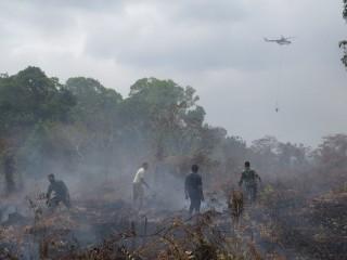 511 Hektare Lahan di Banjarbaru Terbakar Selama 2018