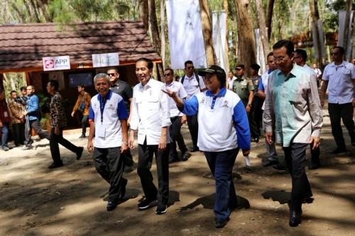 Presiden Joko Widodo hadiri Festival Kesatuan Pengelolaan Hutan