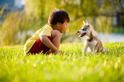 Studi: Partisipasi Anjing Membantu Proses Terapi Bicara Anak