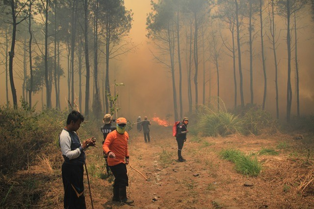 Petugas gabungan terkepung kobaran api dan kepulan asap saat melakukan pemadaman kebakaran hutan di lereng Gunung Ciremai, Kuningan, Jawa Barat, Rabu (3/10). ANTARA FOTO/Dedhez Anggara.