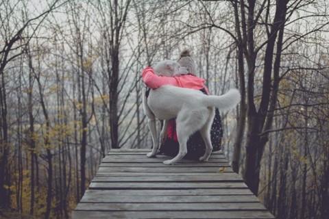 Jika anjing Anda mengikuti Anda ini merupakan tanda yang baik.
