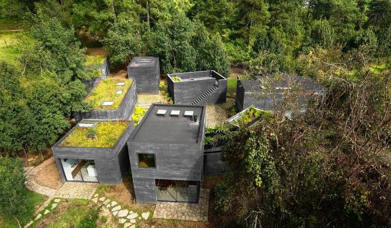 Atap rumah difungsikan sebagai taman yang juga sekaligus menampung air hujan sebagai sumber air bersih. dezeen/Rafael Gamo
